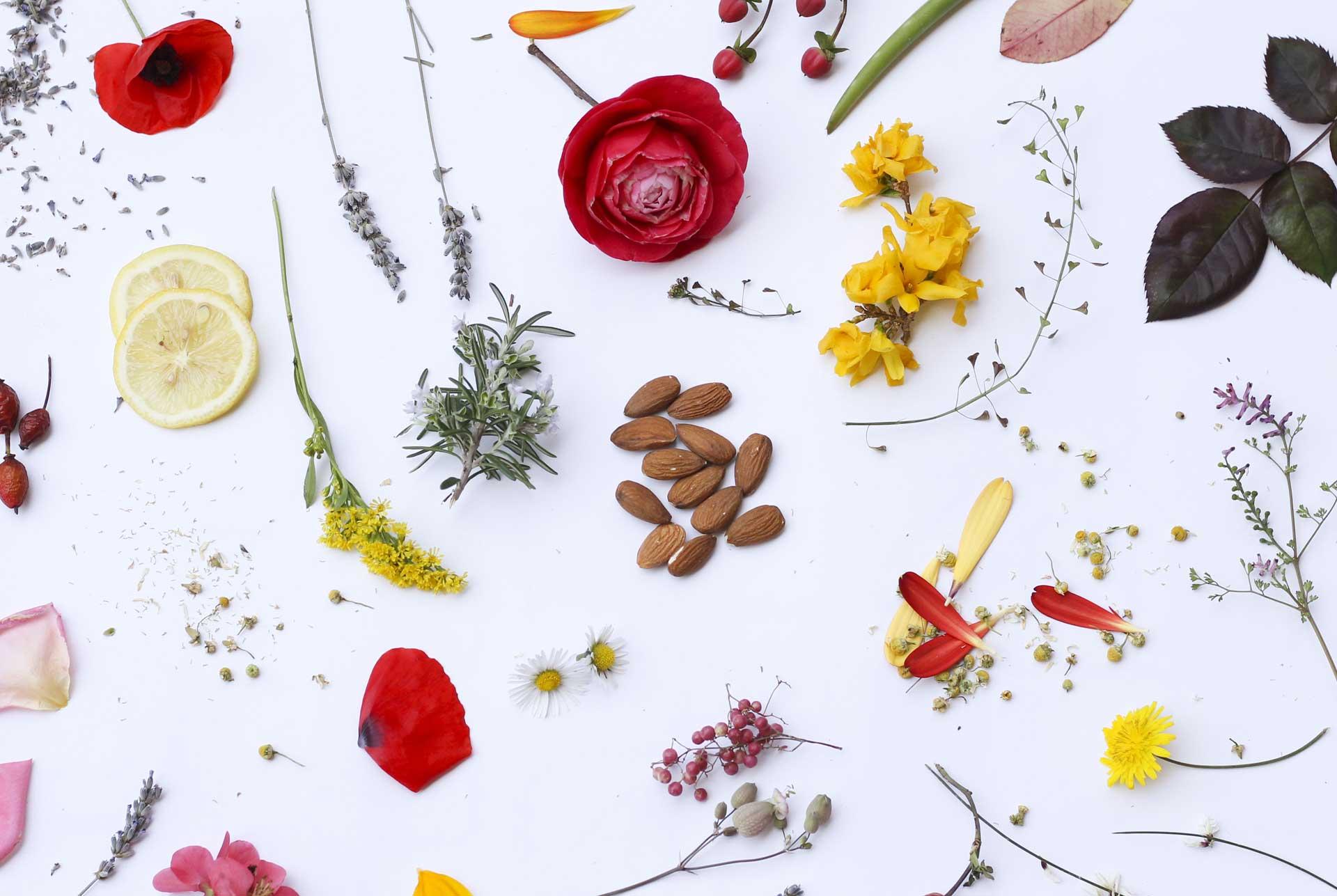 lali-natural-cosmetics_roma